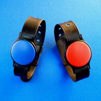 Wristband waterproof RFID tags